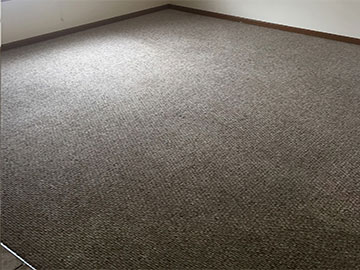 After | A nice and clean carpet brought to you by RCS of Union, MO